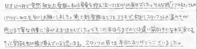 沖縄県くりちゃん